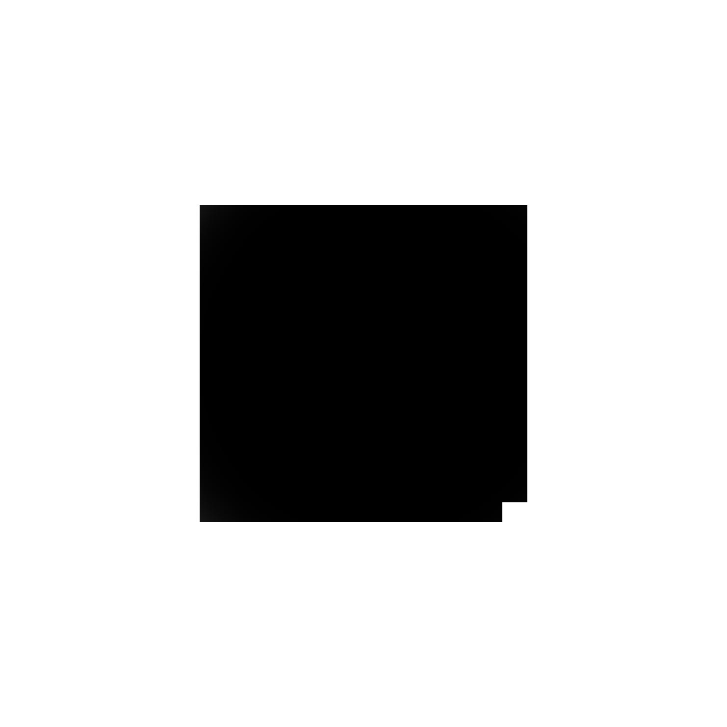 Main logo copy